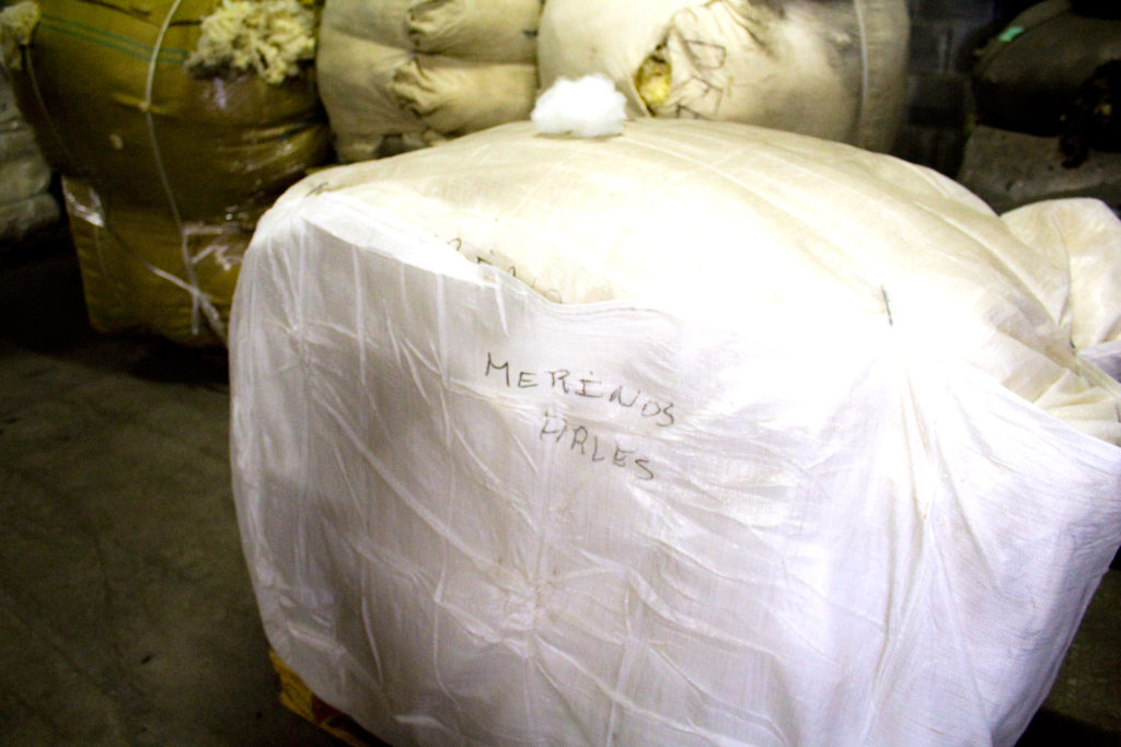"merinos arles 1024x683 - Fonty : la filature ""Made in Creuse"""