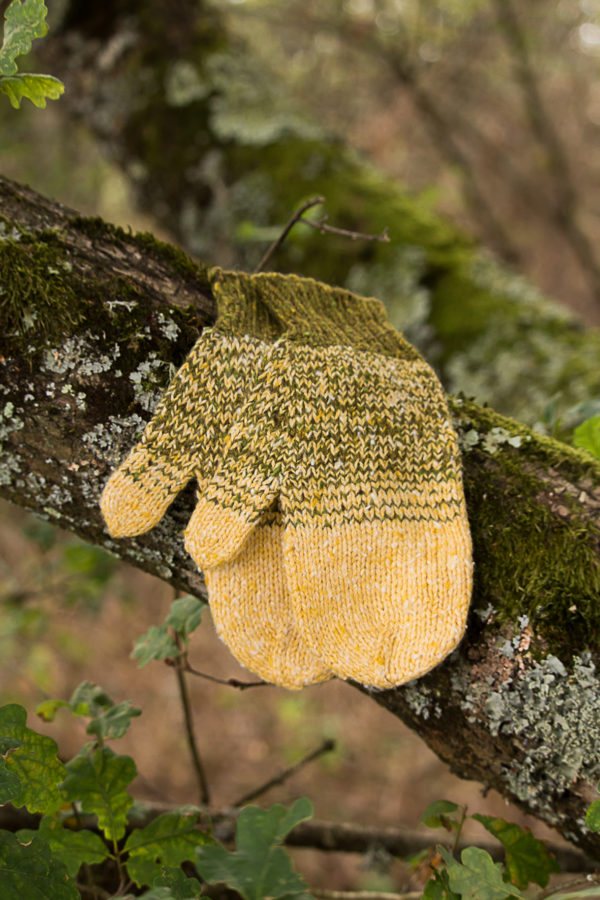 collection nature lucile 35 600x900 - Lichen