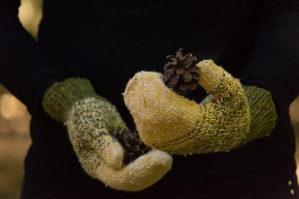 livre nature lucile ateliers designs portees 47 600x400 - Lichen