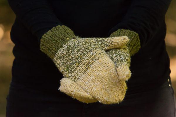livre nature lucile ateliers designs portees 48 600x400 - Lichen